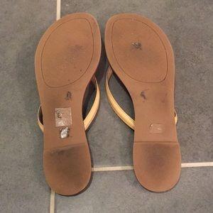 41a91fd77770 Tory Burch Shoes - Tory Burch Terra Thong - Sun Beige